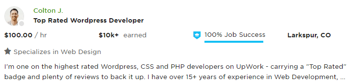 Good Example of UpWork Profile Overview