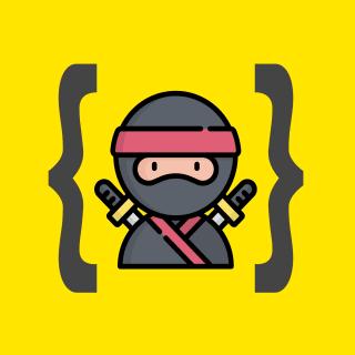 The Ninja Programmer profile picture