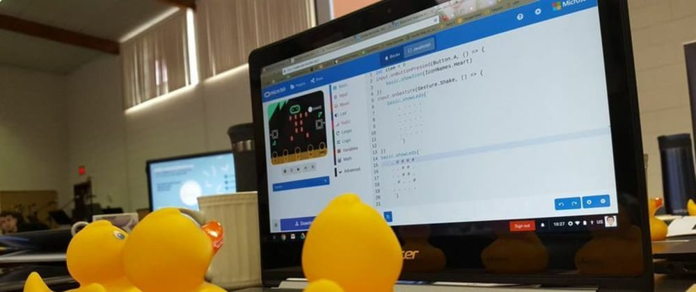 Cover image for Rubber Duck Debugging in 100 Seconds