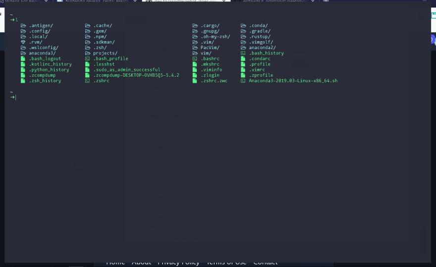 What does your Terminal look like? - DEV Community 👩 💻👨 💻