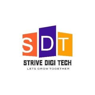 Strive Digi tech profile picture
