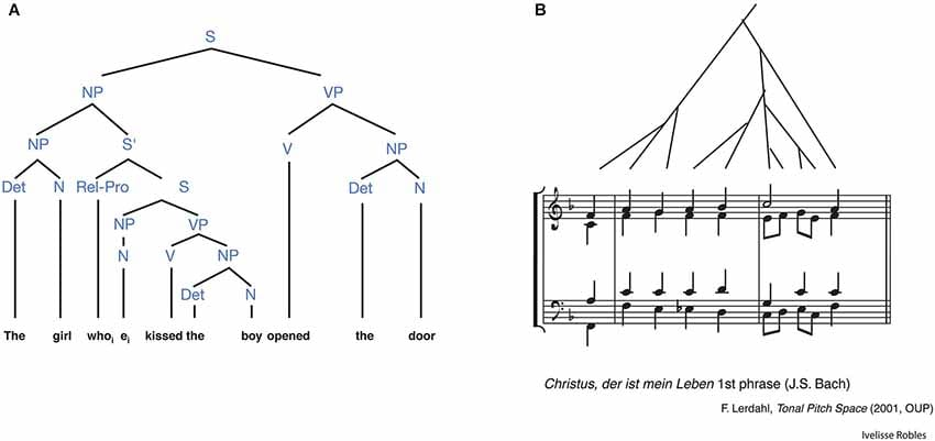 Similarities in hierarchical thinking applied to music and language.
