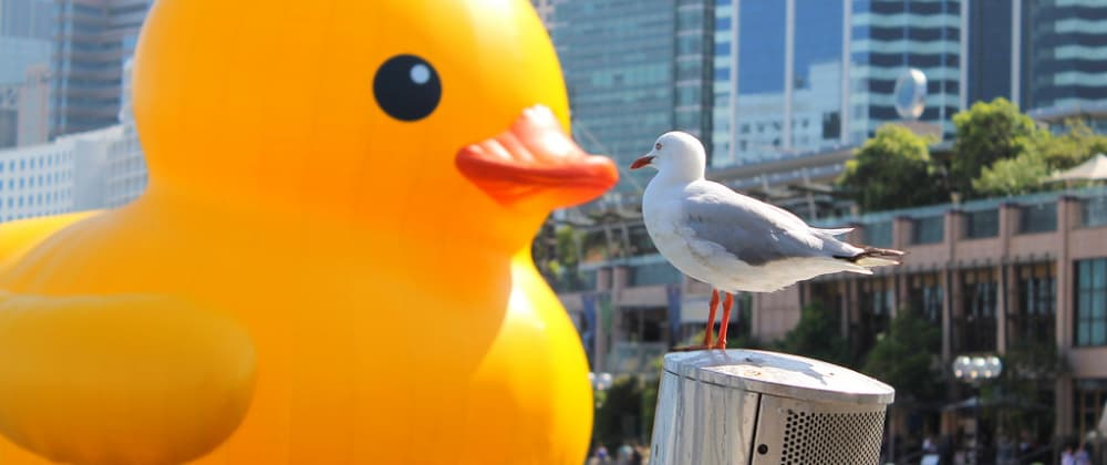 Cover image for Becoming The Duck