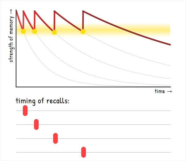 Graph of strength-of-memory vs time showing successive revisions need decreasing frequency
