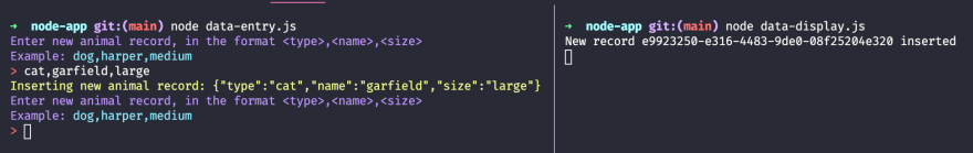 """A split-terminal screenshot. On the left-side: The first line is my bash profile header styled and says """"➜  node-app git:(main) node data-entry.js"""". The second line is in purple and says """"Enter new animal record, in the format <type>,<name>,<size>"""". The third line is purple and blue and says """"Example: dog,harper,medium"""". The fourth line is red and white and says """"> cat,garfield,large"""". The fifth line is yellow and says """"Inserting new animal record: {""""type"""":""""cat"""",""""name"""":""""garfield"""",""""size"""":""""large""""}"""". The second, third, and start of the fourth line repeat themselves one more time. On the right-side: The first line is my bash profile header styled and says """"➜  node-app git:(main) node data-display.js"""". The second line is in white and says """"New record e9923250-e316-4483-9de0-08f25204e320 inserted""""."""