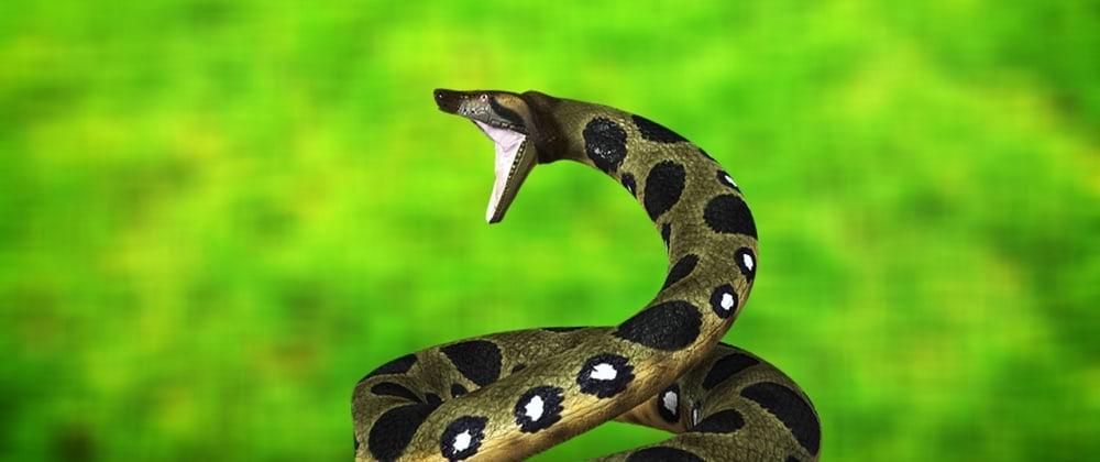 Cover image for Uninstall Anaconda from MacOS Catalina