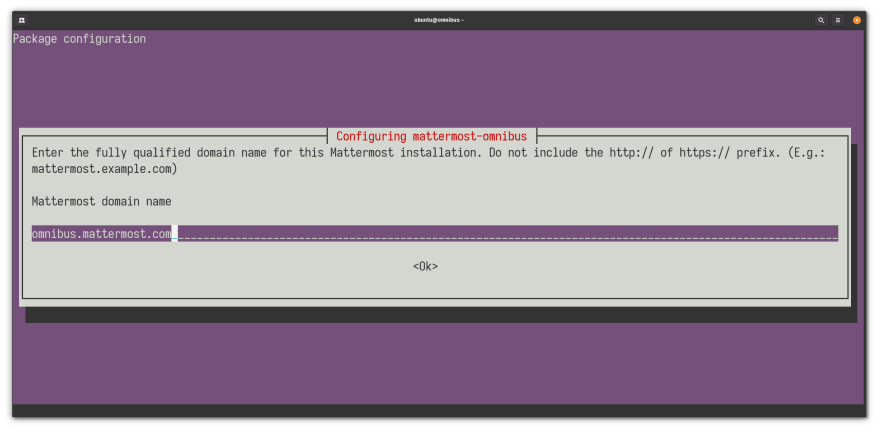 Installer screen that asks the user to introduce a domain name for Omnibus