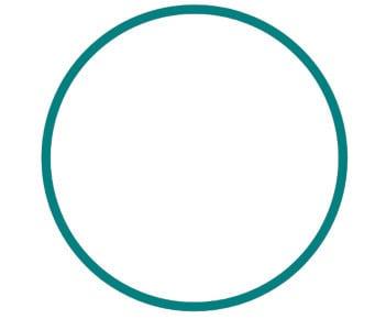circle-full