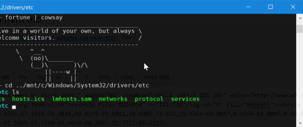Cover image for WSL ubuntu zsh nvm etc.