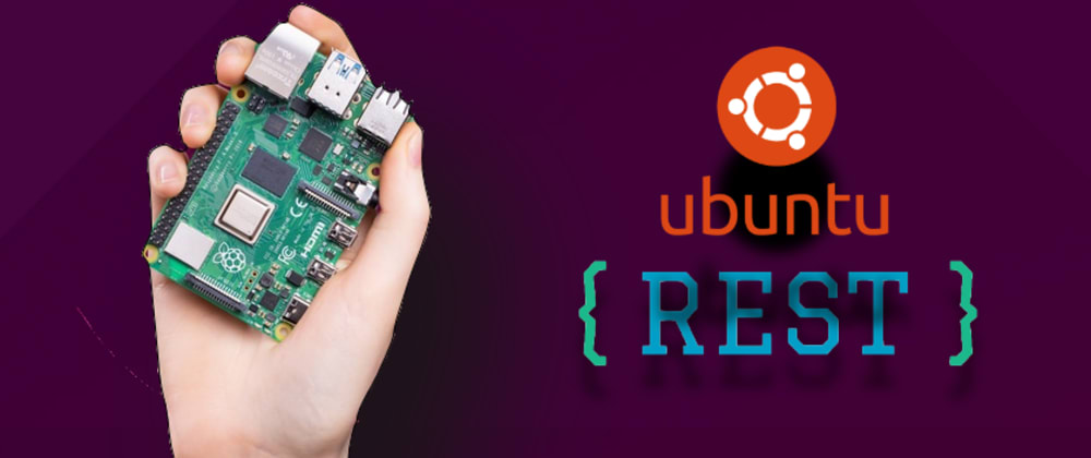 Cover image for I built a simple rest API with node and a Raspberry Pi