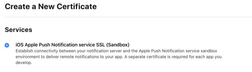 iOS Apple Push Notification service SSL (Sandbox) option