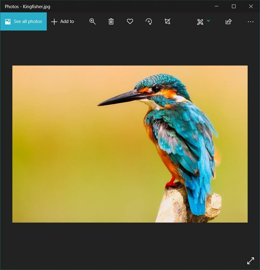 Opening an Image with Pil