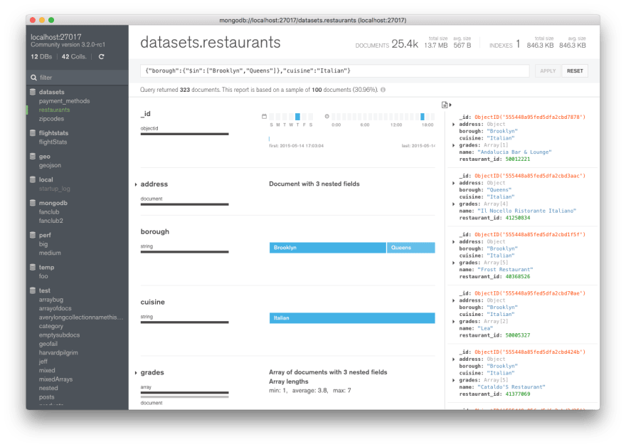 MongoDB Compass: Document Viewer