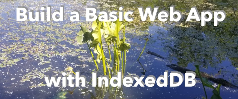 Cover image for Build a basic web app with IndexedDB