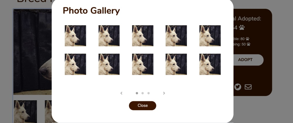 Cover image for Carousel (Slider) component on Bootstrap