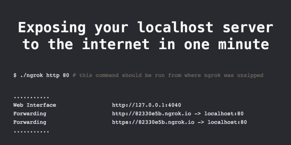 Exposing localhost server to the internet in one minute - DEV