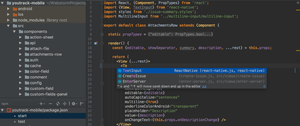 Cover image for How to use WebStorm on the server
