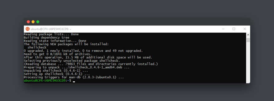 Using `shellcheck` to lint your bash/sh scripts  - DEV