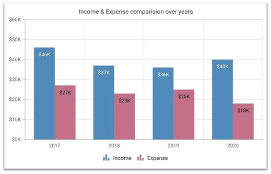This column chart shows the past years' income and expense details.