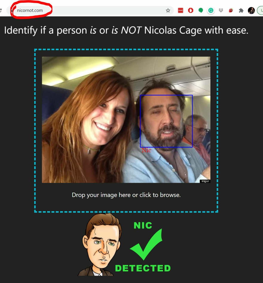 Nic or Not website