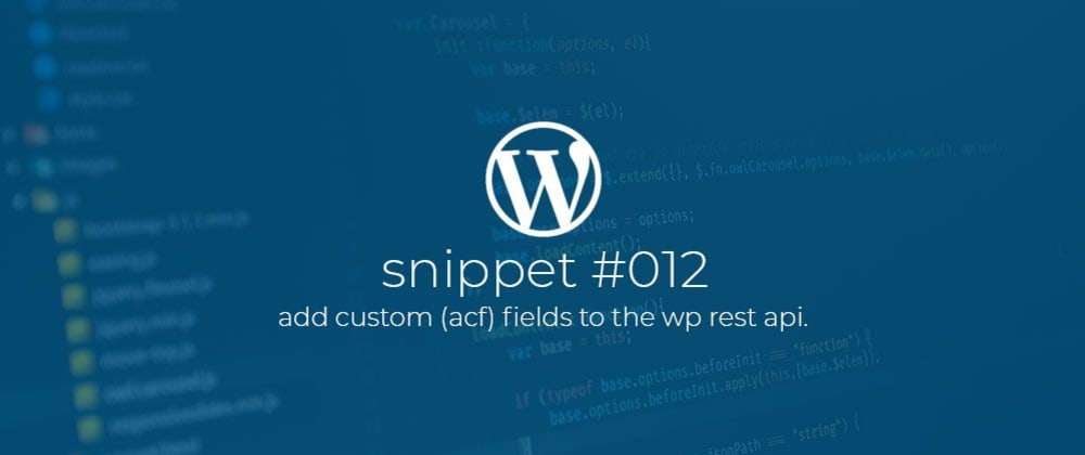 Cover image for WP Snippet #012 Add custom (ACF) fields to the WP Rest Api.