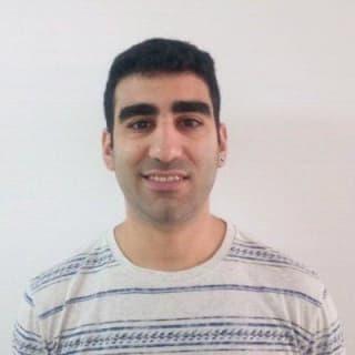 Daniel Netzer profile picture