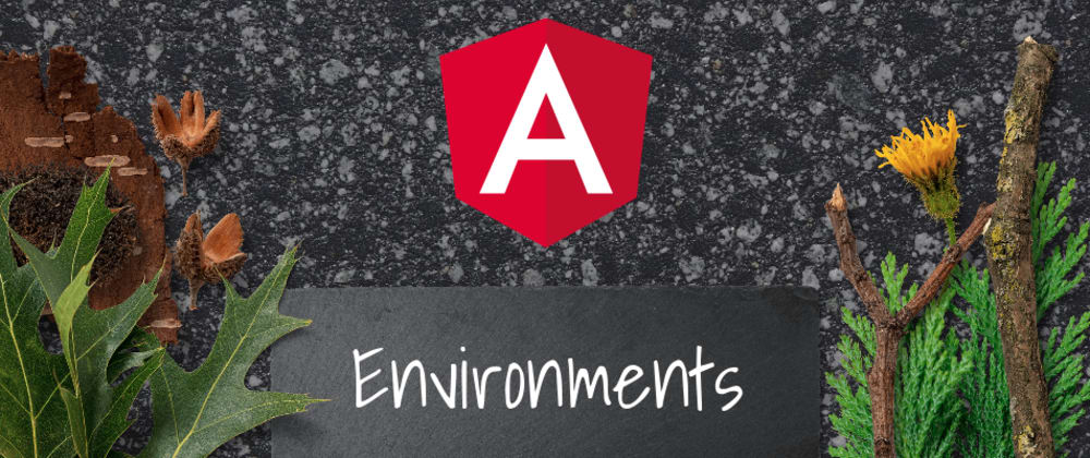 Cover image for Angular Environment Setup - Safe & Testable