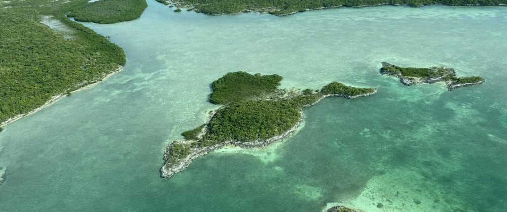 Cover image for Algorithm Tutorial: Max Area of an Island (DFS)