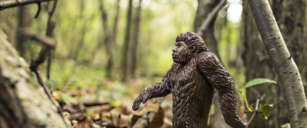Cover image for Loading Bigfoot Data from CSV Files into Redis
