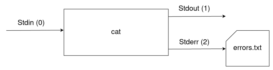 Any errors displayed by `cat` will be redirected into the `errors.txt` file