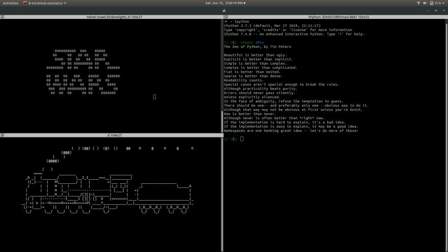 I use terminator + zsh + OhMyZsh! with robbyrussel theme  — DEV