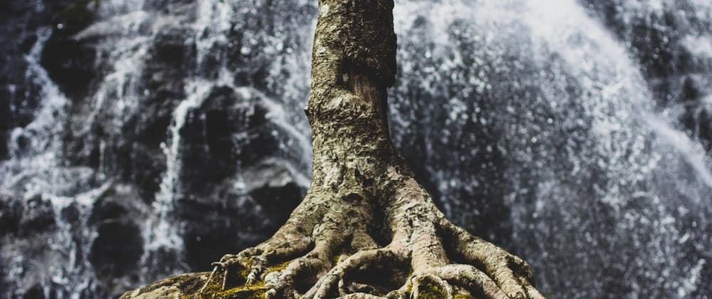 Cover image for Multiple React Roots in AngularJS