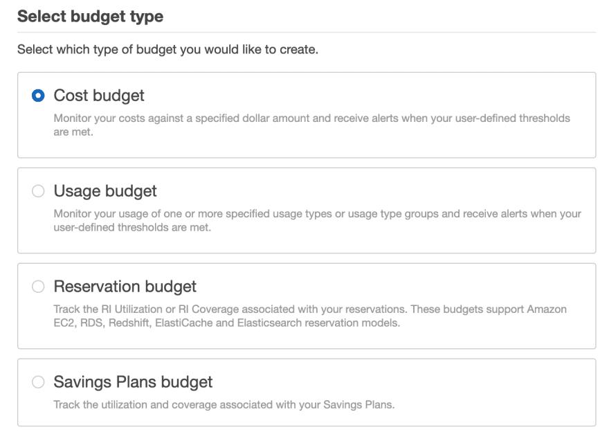 AWS Budget type