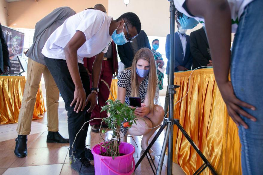 Demonstration of Plant Signal app