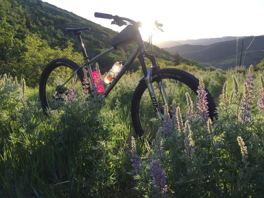 a bike in flowers