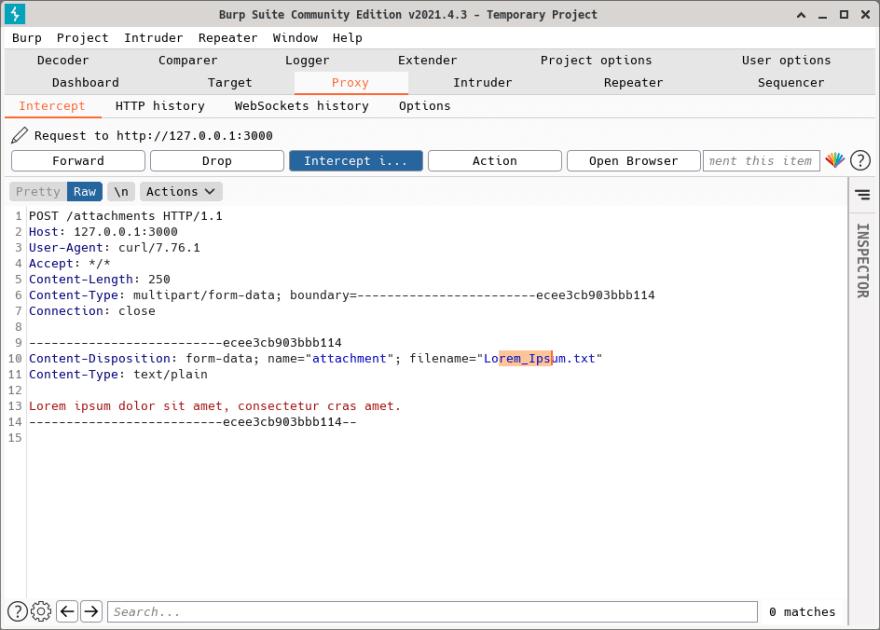 BurpSuite intercepting requests