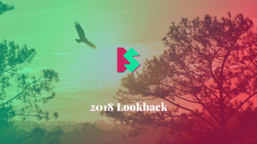 2018 lookback cover