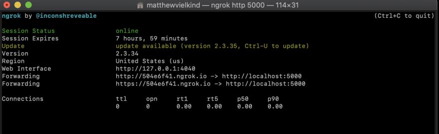Screenshot of ngrok in commandline