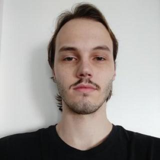 Vinicius Savegnago profile picture