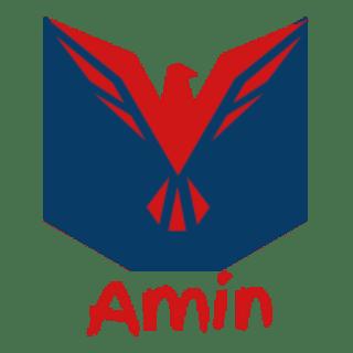 amin-da profile picture