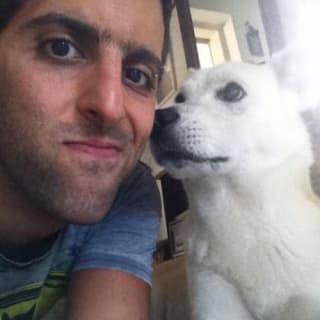 Liran Cohen profile picture