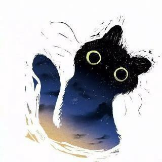 wingsico profile picture