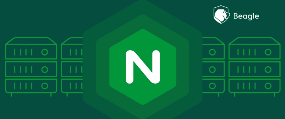 Cover image for Nginx Server Security: Nginx Hardening