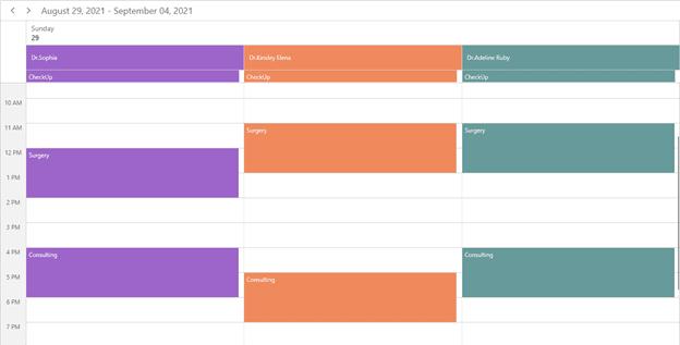 Group by Date in WinUI Scheduler