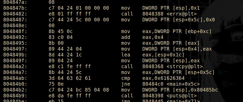 Cover image for Validating program arguments (Protostar - stack1)