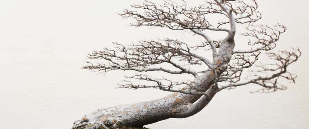 Cover image for Self-Balancing Trees