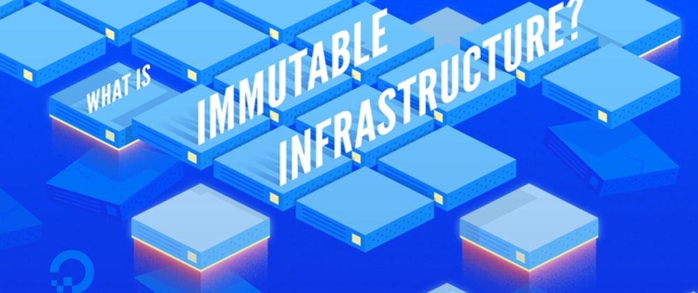 Cover image for What Is Immutable Infrastructure?