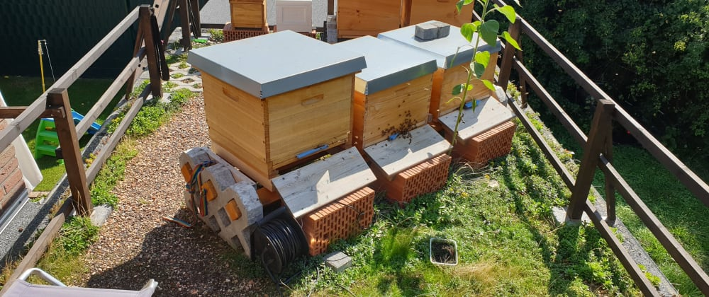 Cover image for The Hive Monitoring project