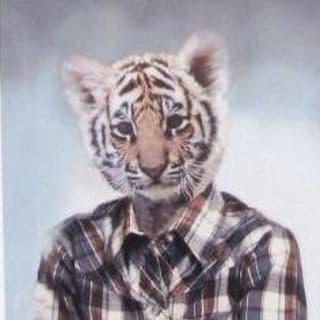 FMu profile picture