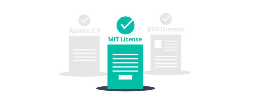 Type of software licenses